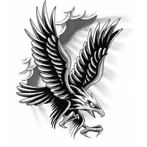 Wzór Tatuażu Orzeł Monika Wypożyczalnia Sprzętu